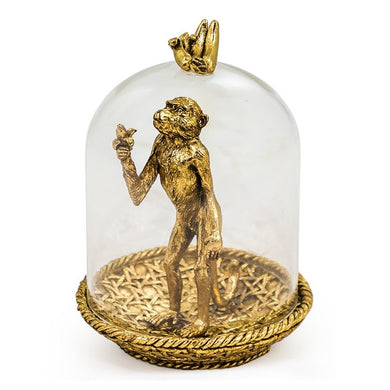 Hungry Golden Monkey In Glass Dome