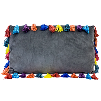35x60cm Rectangular Arco Iris Tasselled Velvet Cushion
