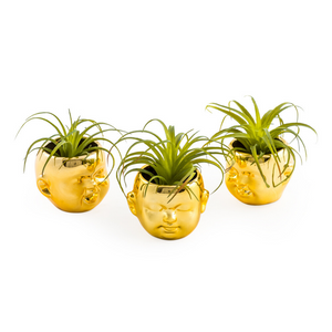 Set of 3 Gold Mini Baby Face Pots