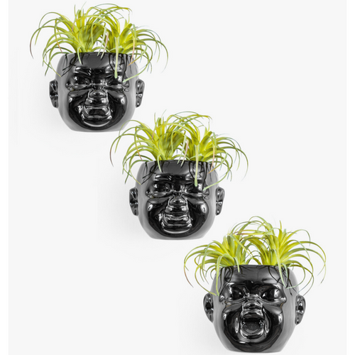 Set of 3 Black Medium Baby Face Pots / Sconces