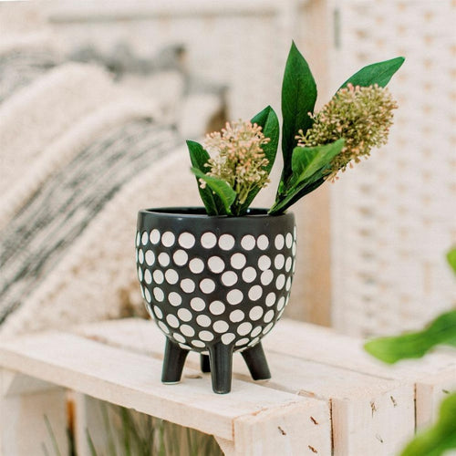 Black Ceramic Dotty Planter