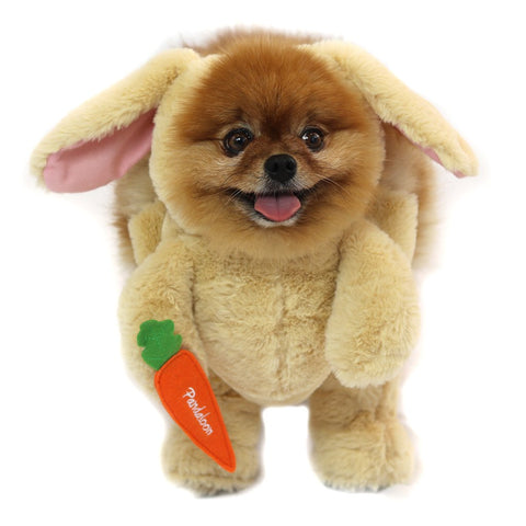 Walking Bunny Dog Costume
