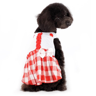 Hippie Country Plaid Dog Dress