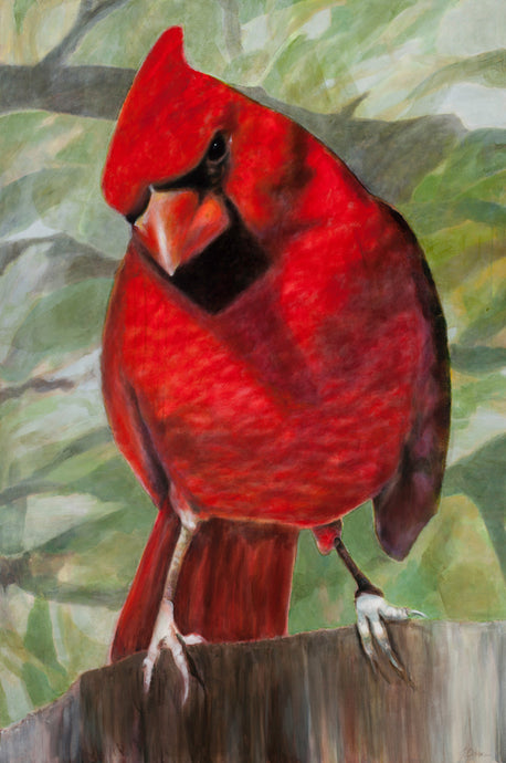 Cardinal Art Print Limited edition archival pigment print.