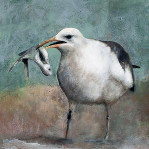 Herring Gull with Fish limited edition archival pigment print on canvas