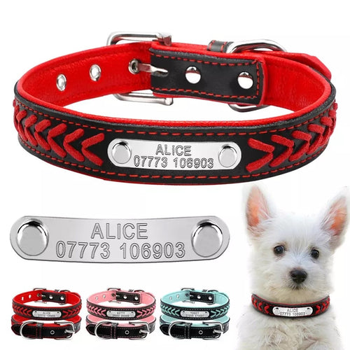 Everyday Personalised Dog Collar with Colour coded Matching Padding