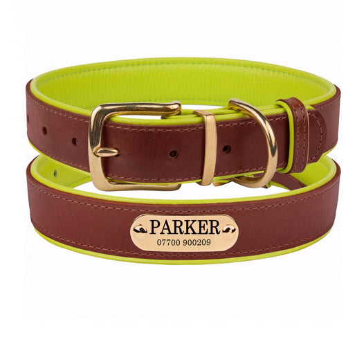 Personalised Handcrafted Genuine Leather Collar With Brass Buckle and Name Plate - Lime Green