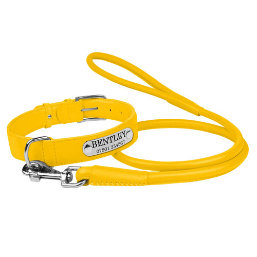 Personalised Handcrafted Genuine Yellow Leather Dog Collar and Leash Set