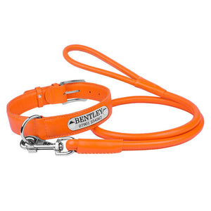 Personalised Handcrafted Genuine Orange Leather Dog Collar and Leash Set
