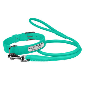 Personalised Handcrafted Genuine Mint Green Leather Dog Collar and Leash Set