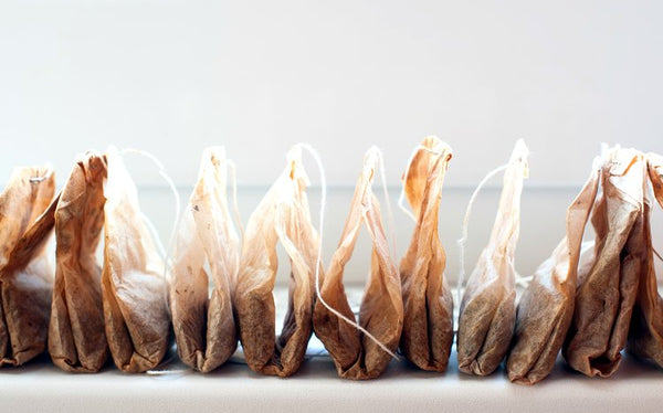 Tea bags in a row (photo by Shutterstock)