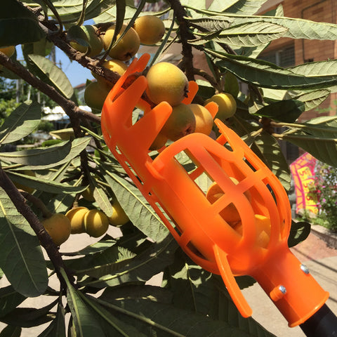 PROSTORMER High Altitude Fruit Picker No pole 1Piece Plastic Picker without Pole Fruit Catcher Picking Tool Garden