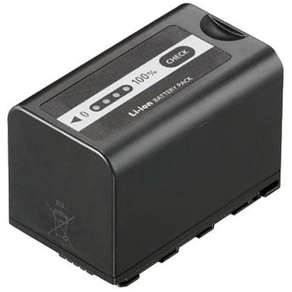 Panasonic VW-VBD58 Battery Pack
