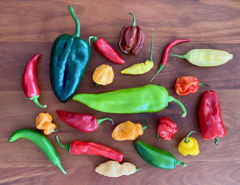 All about peppers: flavor profiles, storage tips, cooking ideas, and a wee bit of history