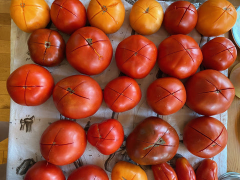 How to make the most of your tomatoes + preservation, no canning required