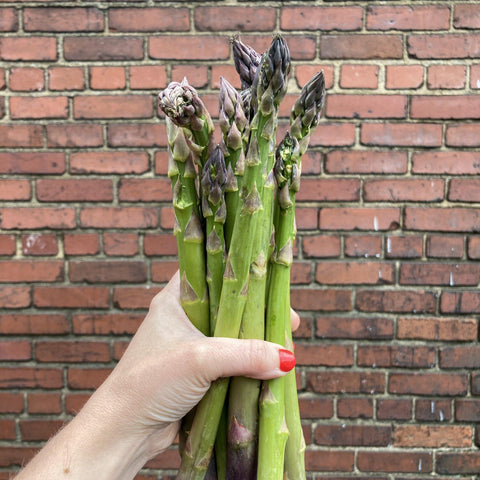 Asparagus Shlagel Farms 1 bunch