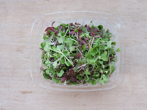 Nutri Dense Microgreens Little Wild Things