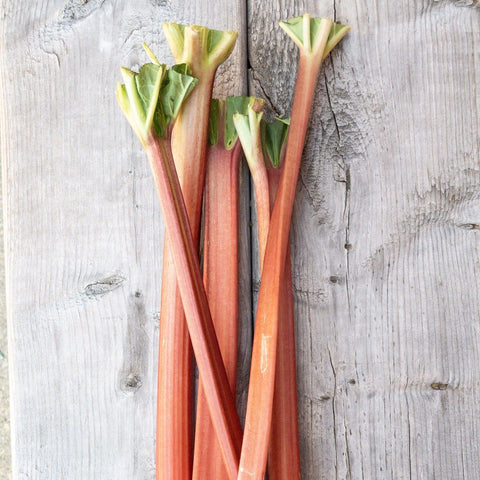 Rhubarb Path Valley Farms Half pound