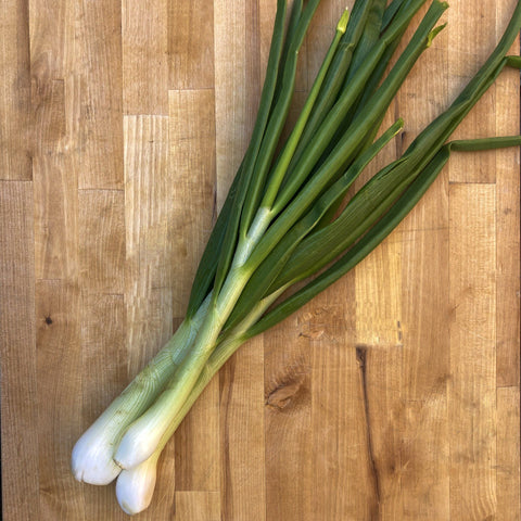 Spring Onions Good Fortune Farm 1 bunch