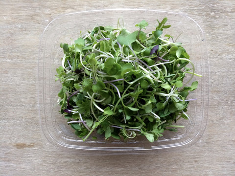 Super Salad Microgreens Little Wild Things
