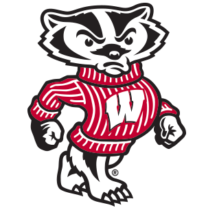 Wisconsin Badger Licensed Fabric