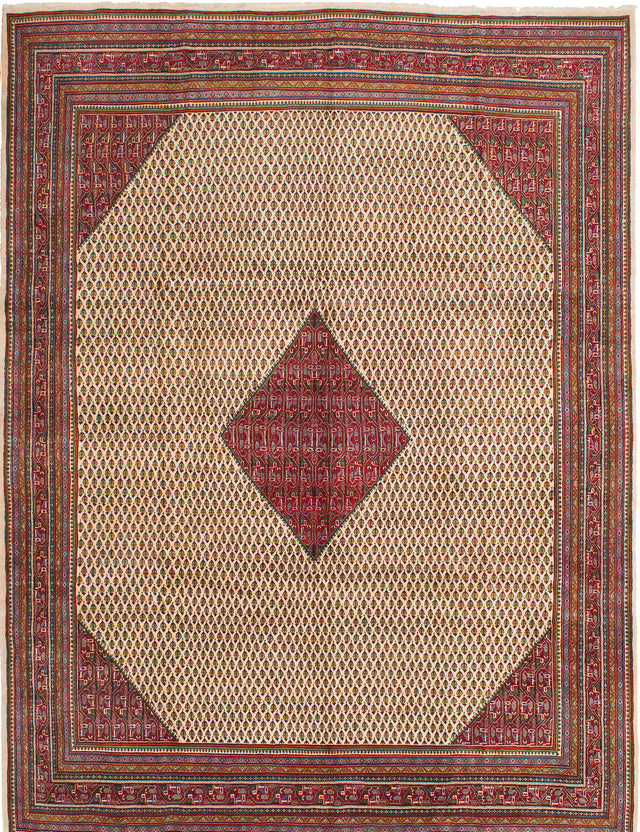 Hand-knotted  Bordered  Traditional Arak Area rug  Cream 9.4 x 12.8