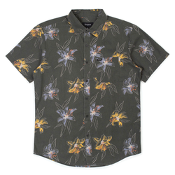 Brixton Charter Print Woven - Washed Black/ Honey