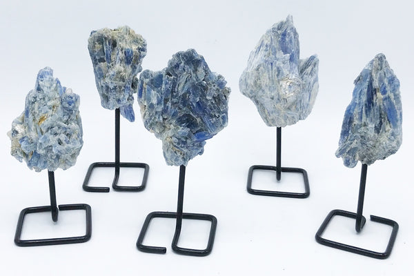 Blue Kyanite on stand - Zero Point Crystals