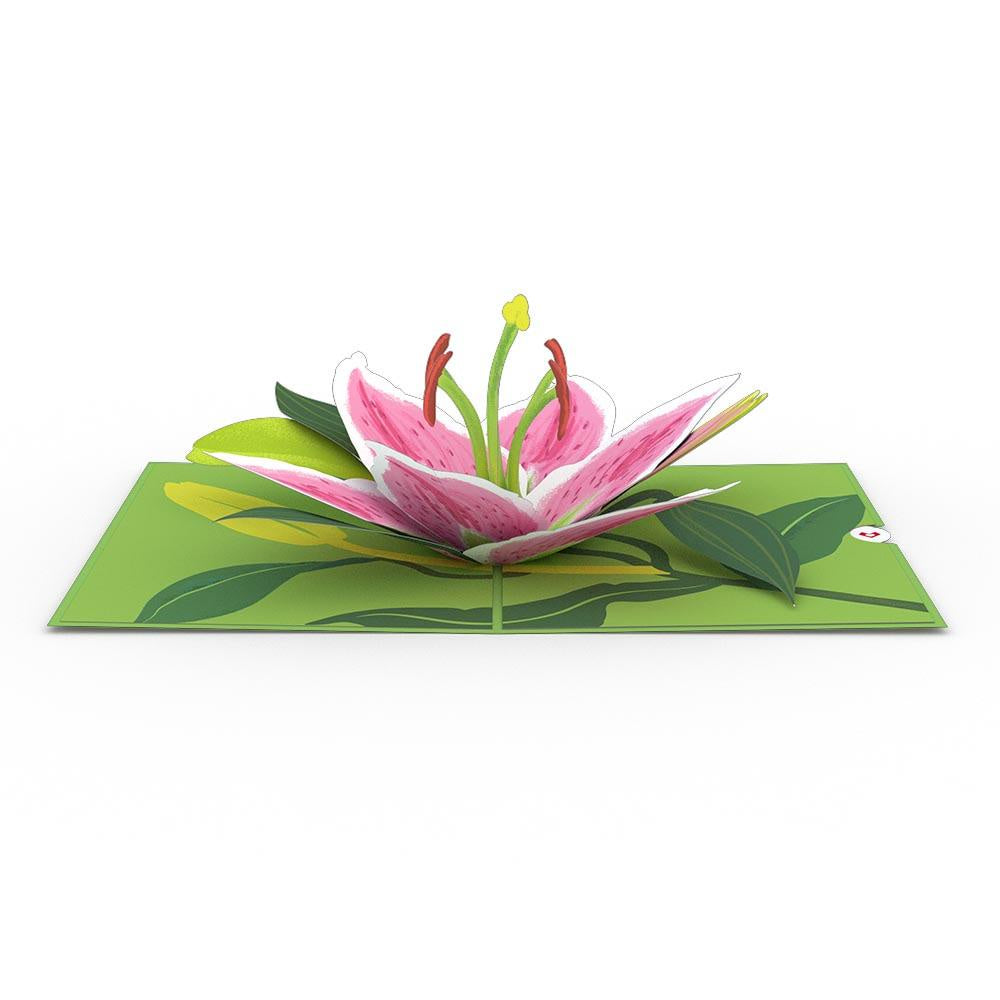 Lily Bloom Pop-Up Card - Zero Point Crystals