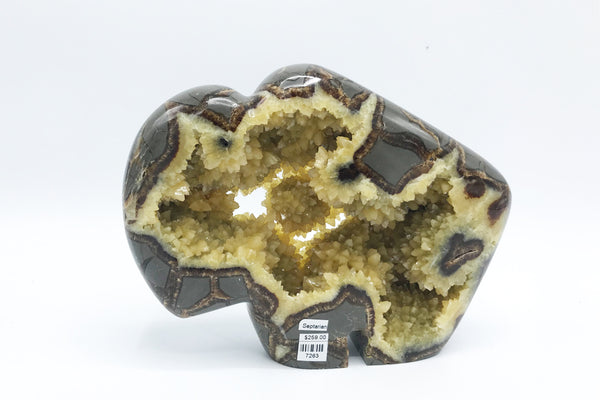 Septarian Buffalo - Zero Point Crystals