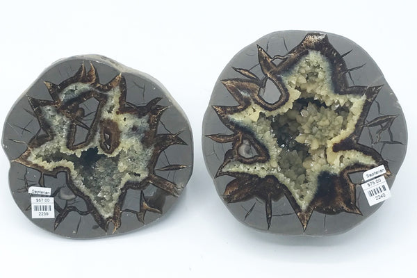 Septarian Halves - Zero Point Crystals