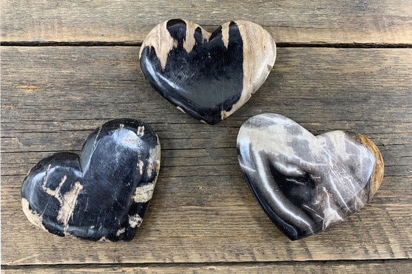 Petrified Wood Heart - Zero Point Crystals