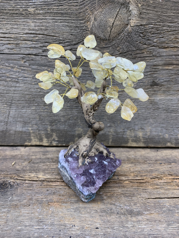 Citrine Gemstone Tree - Zero Point Crystals