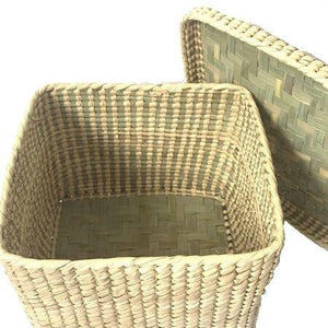 Palmleaf straw Cube Storage Basket With Lid sage green - Mystic World Finds
