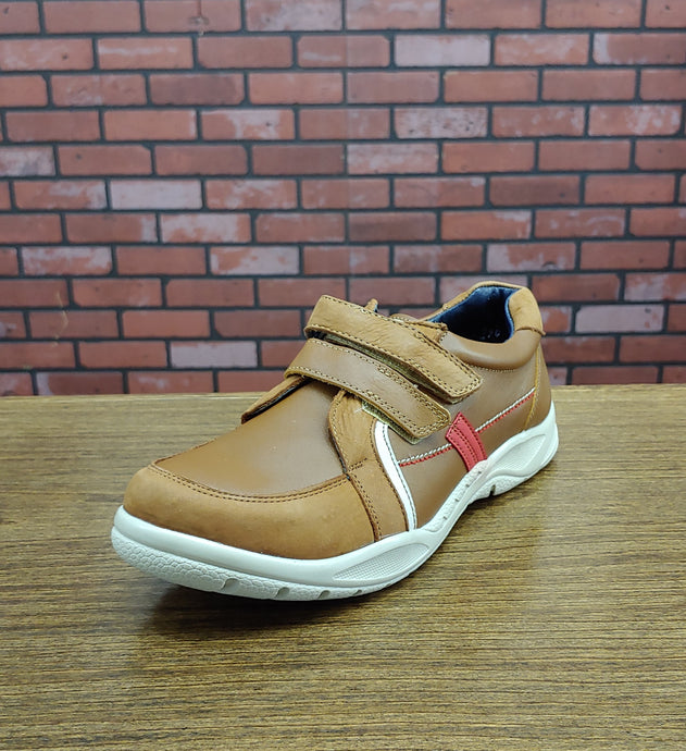 Boys Camel Brown Shoe