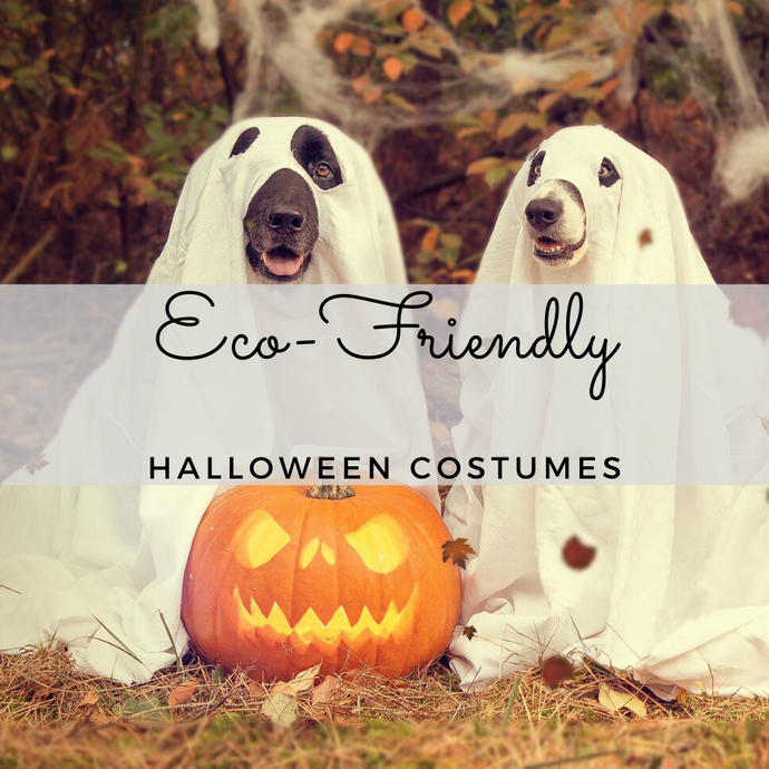 Make Your Child's Halloween Costume Eco Friendly!