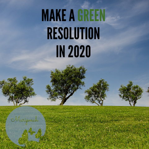 Green New Years Resolutions