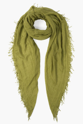 Chan Luu Accessories Cashmere & Silk Scarf in Split Pea
