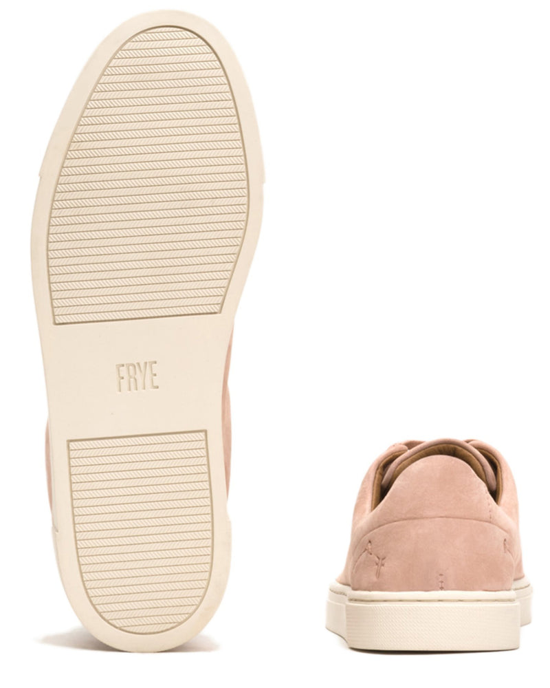 The Frye Company Shoes Ivy Low Lace in Blush