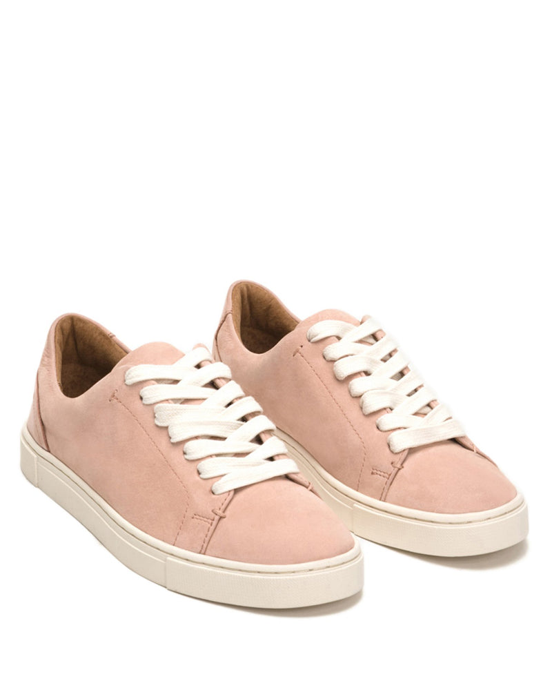 The Frye Company Shoes US 6 Ivy Low Lace in Blush