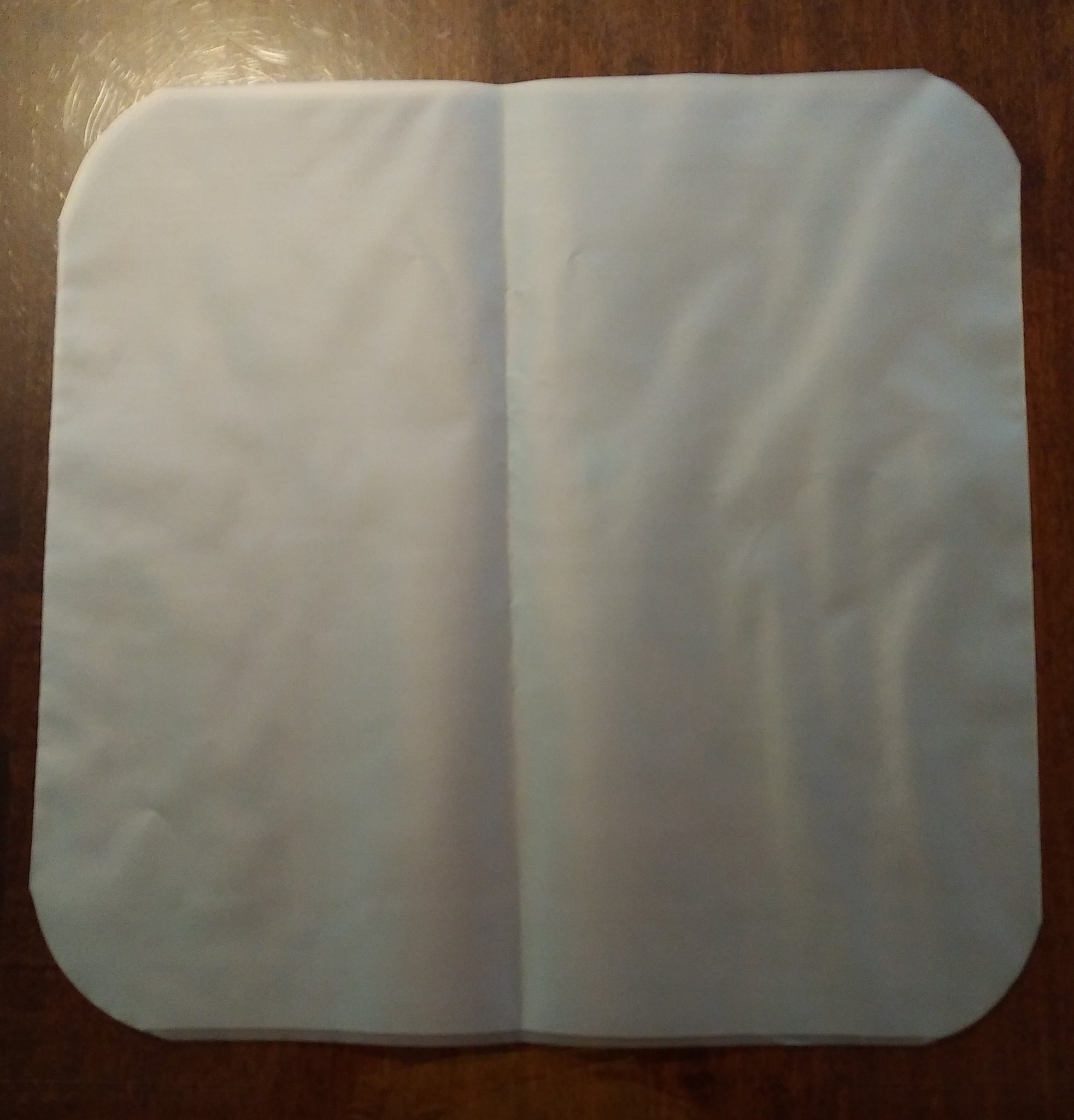 Bulk Order 3 mil Inner Record Sleeve- WITHOUT a center Hole Punch-500 sleeves