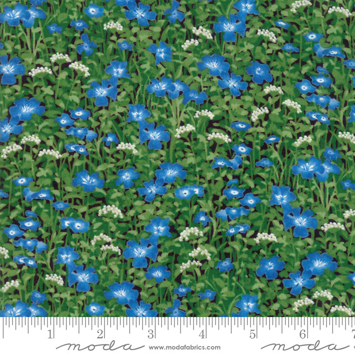 Moda Fabrics - Wildflowers IX Bluebell - Wildflowers Light Blue