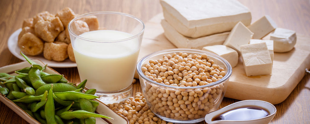 Soy beans, soy milk, and tempeh