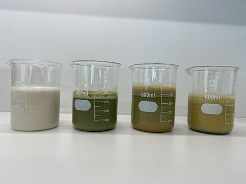 Different plant proteins in solution