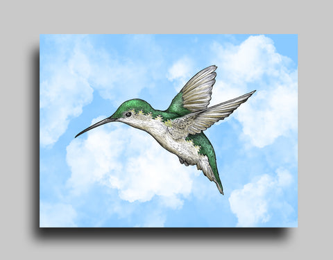 Hummingbird Blue - Canvas