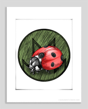 Lady Bug - Paper