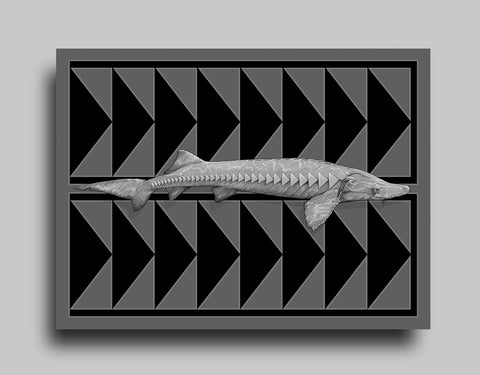 Sturgeon - Canvas