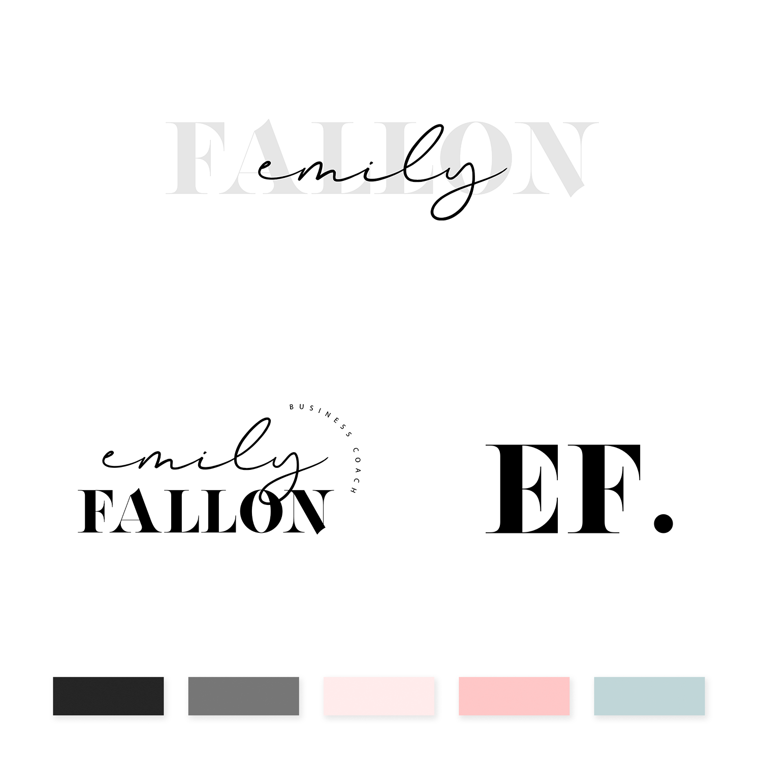 Emily Fallon Brand Kit - jessica gingrich
