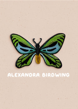 Queen Alexandra Birdwing Pin