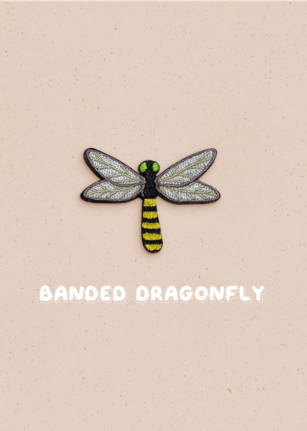 Banded Dragonfly Pin